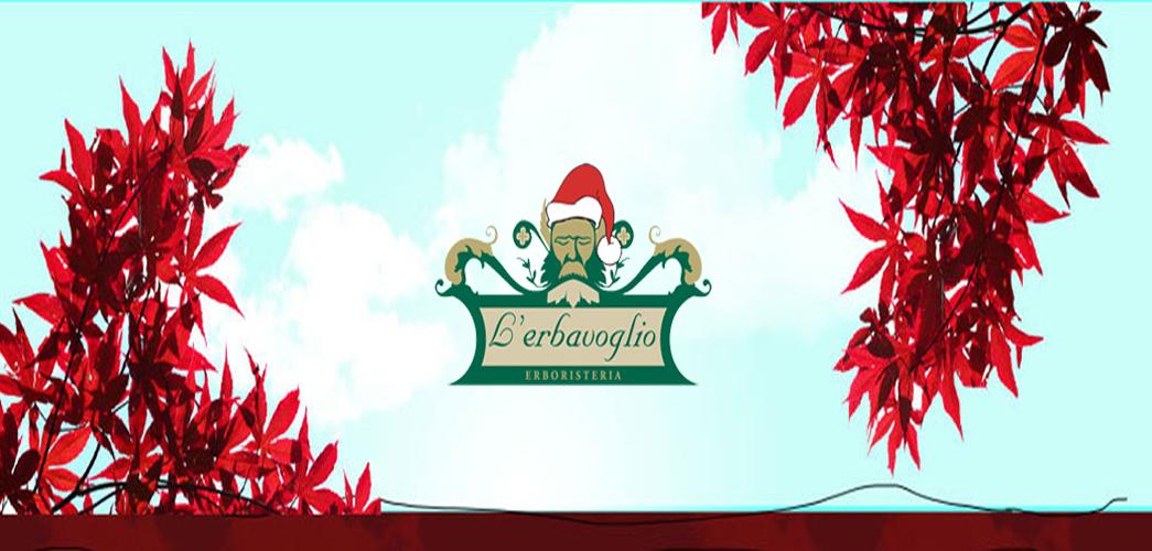 E Sarà Natale. - Pagina 5 Slide-natale-erbavoglio-erboristeria