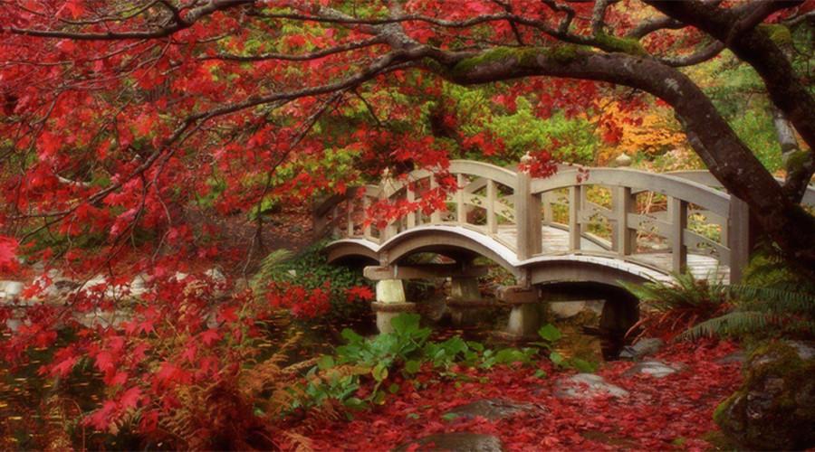 giardino giapponese erbavoglio